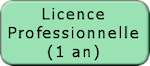 Licence Pro